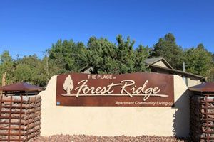 $591  500ftsup2 - Large Studio wVaulted Ceilings and Private Balcony (The Place At Forest Ridge)