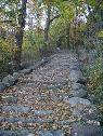 729   903   1632    Restoration of ancient paths in Italy