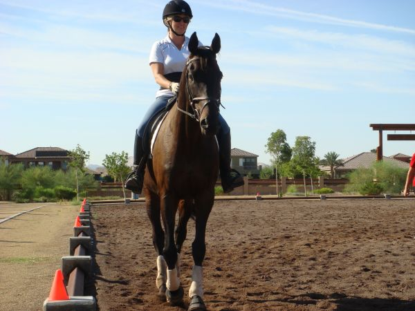Horseback Riding LESSONS and more...Certified Instructor (SW  Mobile )
