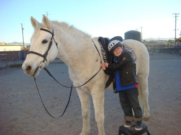Childrens Horseback Riding LESSONS  (SW and Mobile to you )