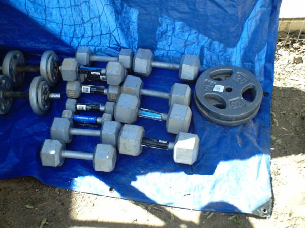 Weight Bench and Weights - $200 (Kingman)