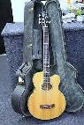 Epiphone El Capitan 5 string acoustic electric bass  Sell or trade  -  400  LHC