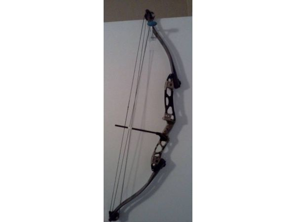 Hoyt Carbonite Compound Bow - $225 (Chandler)