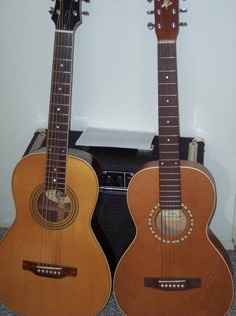 Parlor Guitars for Sale
