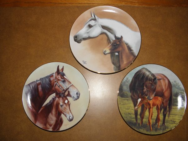 FRED STONE EQUINE PLATES - $25 (Los Olivos)
