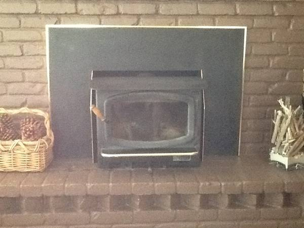 AVALON RAINIER FIREPLACE INSERT - $1650 (Buellton)
