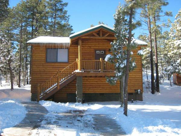 $89  2br - 850ftsup2 - Beautiful 2B1B cabin in Bison Ridge (Show Low, AZ)
