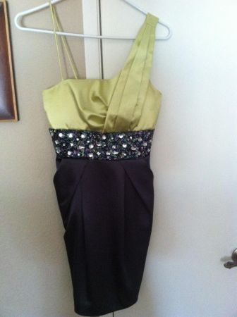 Prom Dresses size 45 - $20 (North Stockton Wagner heights)